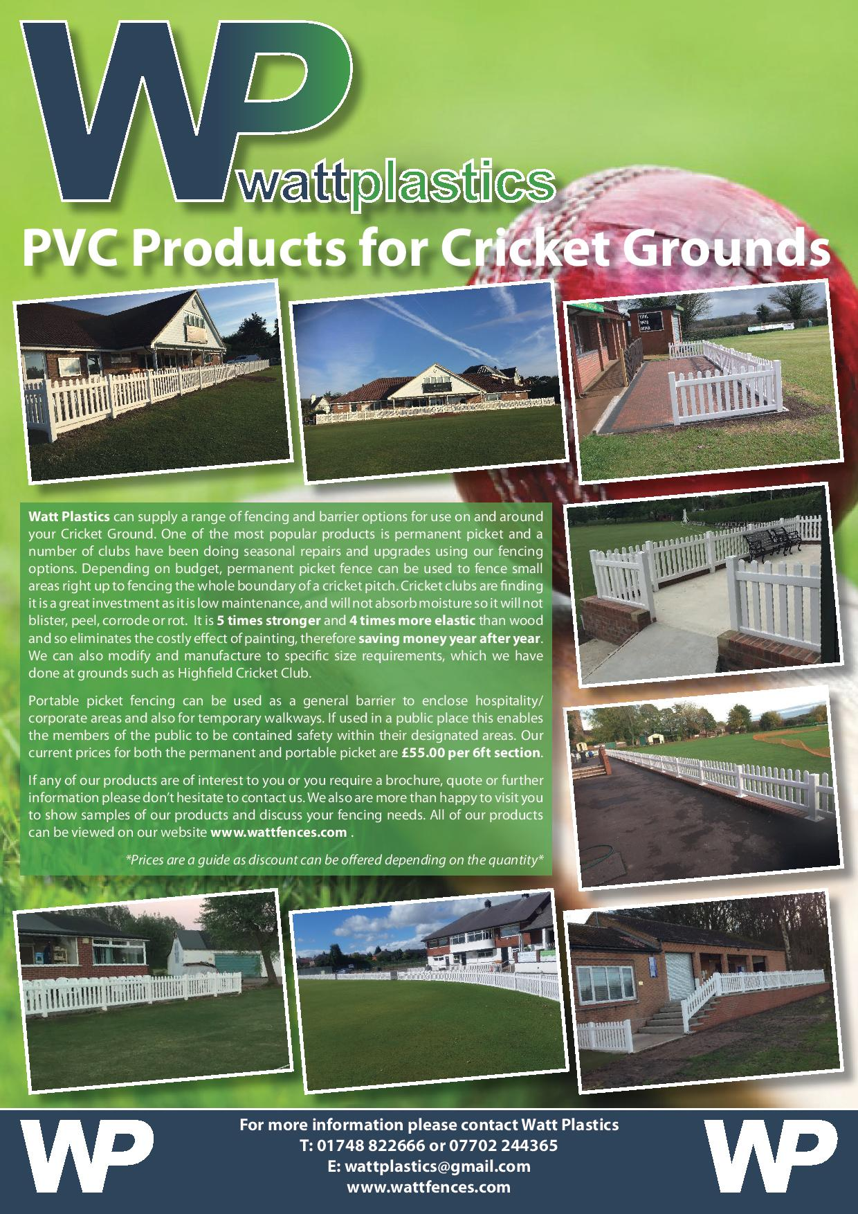 WP Cricket Flyer